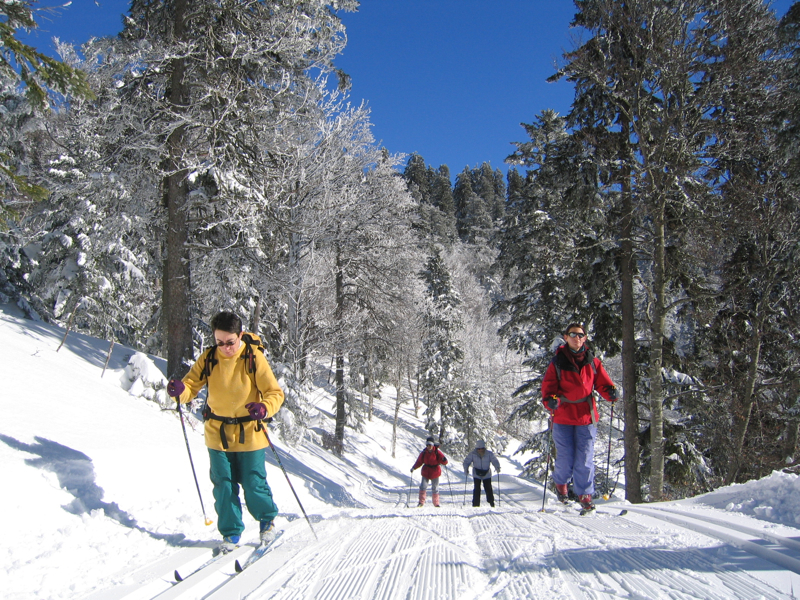 ski-0042