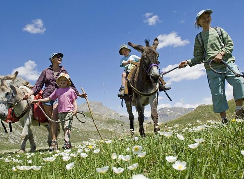 Le Queyras, du coq à l'âne en famille - accompagné et en itinérance